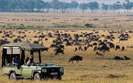 Great Plains Mara