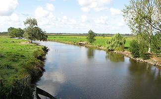 Discover Brière Regional Natural Park