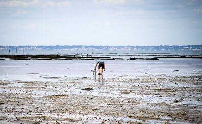 A shellfish hunter's paradise (La Plaine sur Mer)