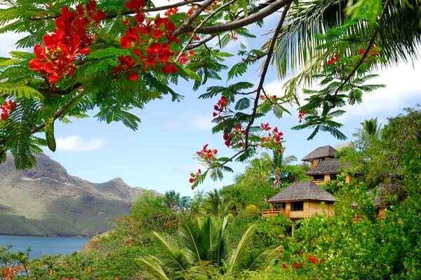 Nuku Hiva Pearl Lodge