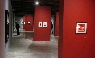 История зарождения фотографии в Музее Нисефора Ньепса, Шалон-сюр-Сон