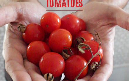 Food for Change: | Chef Marko Gajski | Lesic Dimitri, Croatie