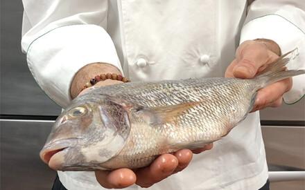Fish Unknown  Chef Devin Bozkaya,  Weekapaug Inn, USA