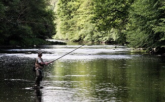 ¡Buena Pesca !
