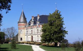 A treetop tasting experience at the Château de Rayne Vigneau