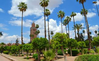 Gardens of the Koutoubia Mosque, Marrakesh