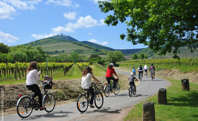 SlowUp: another way to discover the Alsace Wine Route