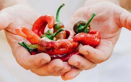 Saving Near-Extinct Foods |Around the World
