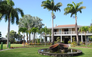 Immerse yourself in Nevis' Botanical Gardens