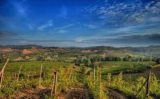 La route du vin, Chianti
