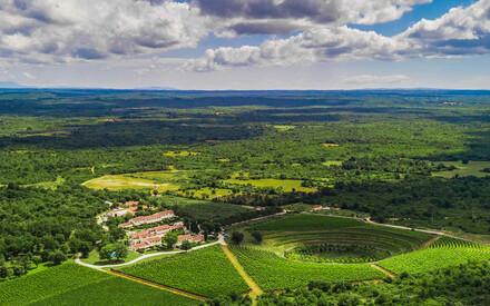 Meneghetti Wine hotel & Winery