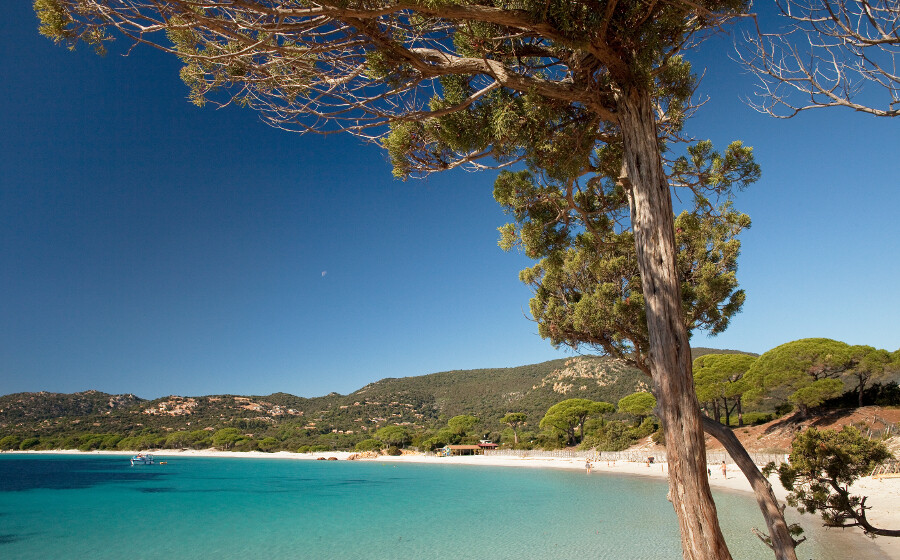 Exceptional lagoons and coves