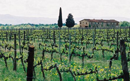 Ferragamo's treasured Il Borro