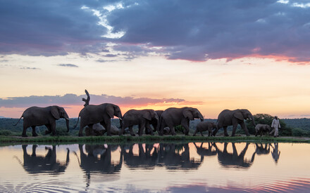 Safaris and wildlife with Relais & Châteaux