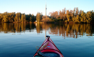 Toronto Islands, nature within city reach