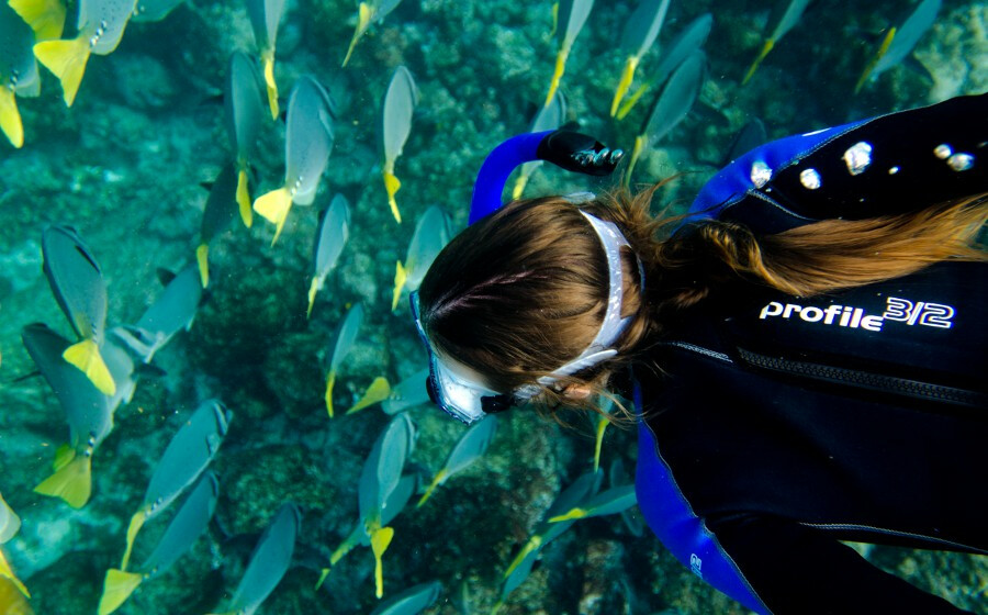 Diving and the seabed