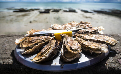 Tasting at the Oyster Market (Cancale)
