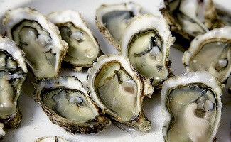 Meeresfrüchte verkosten in  Yerseke
