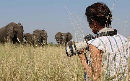 The Photographic Safari