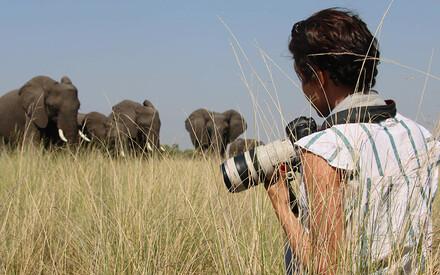The Photographic Safari