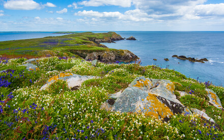 Ireland - from sea breeze to lush pastures
