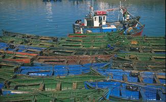 Le port et le retour de pêche