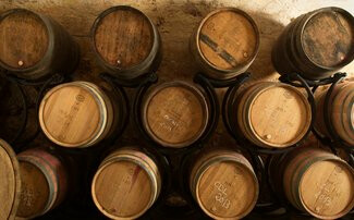 Vienne - Agriculture raisonnée au Domaine viticole de Corps de Loup
