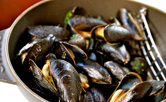 Laurent Hurtaud's farmed mussels