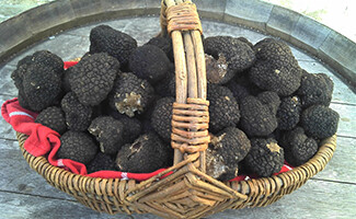 Truffles and Castles