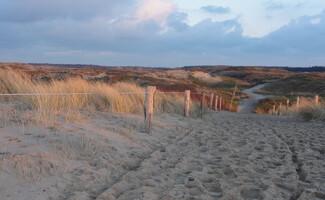 Walk in the Dunes of Texel National Park