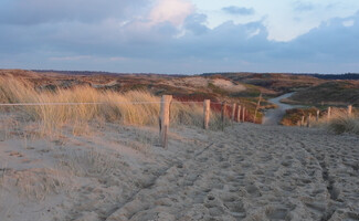Walk in the Dunes of Texel National Park