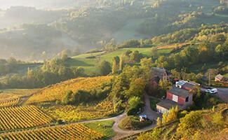 Os vinhos de Marcillac