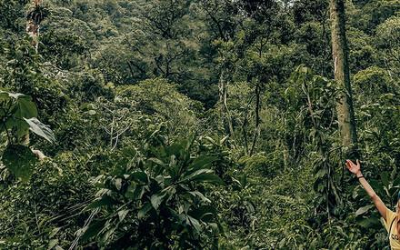 Pura vida Costa Rica !