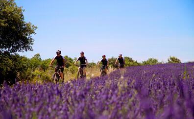 Giro in bicicletta sulla ciclabile del Calavon