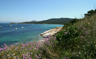 Excursion to Porquerolles Island