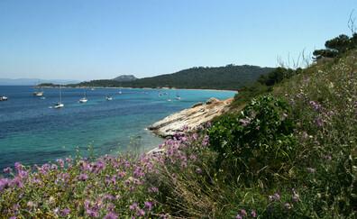 Excursion sur l'île Porquerolles
