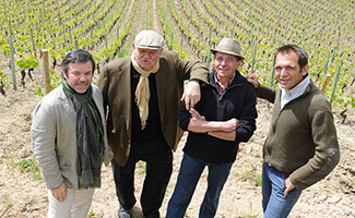 Виноградники роаннского побережья