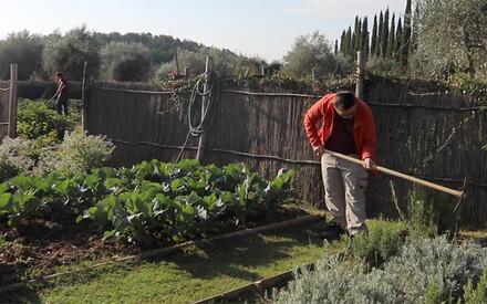 Orto Felice: |The Garden of Goodwill