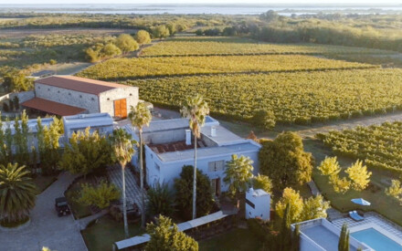 Cast in tradition : |Uruguay's Narbona Wine Lodge