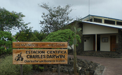 Visit the Charles Darwin Research Station