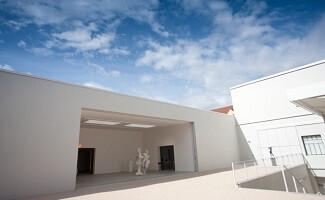 Центр современного искусства в Le Consortium, Дижон