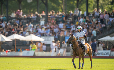 Attend a match at the Greenwich Polo Club