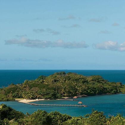 Dolphin Island