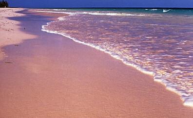 Selfie na Pink Sands Beach