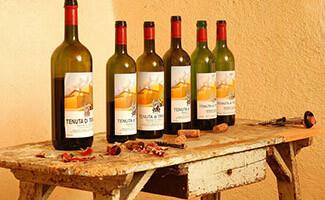 The wines of Tenuta di Trinoro, Sarteano
