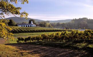 La route des vins de Monticello