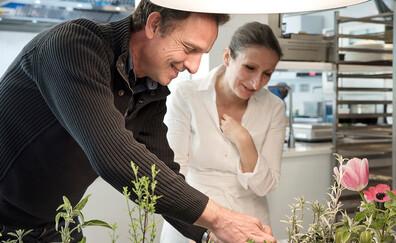 Laurent Bourgeois's amazing aromatic plants (Parnans)