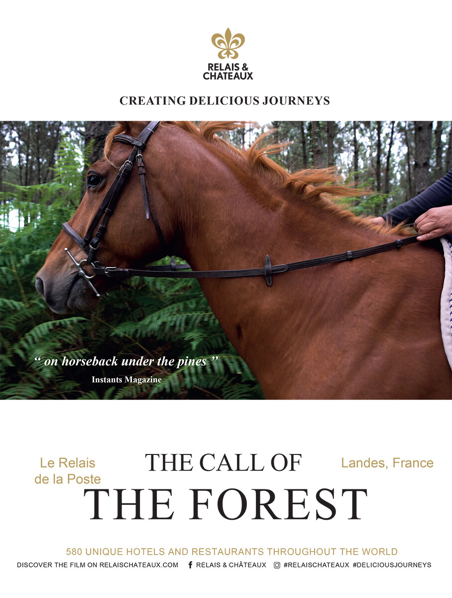 The call of the forest
