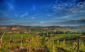 Exploring the Chianti routes