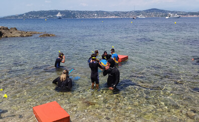 The pleasures of an underwater trail (Cap d'Antibes)